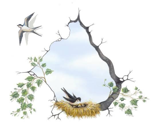 birdholeimage002.jpg